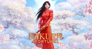 Play Sakura Fortune Slot or free